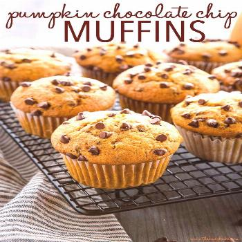 Best Ever Pumpkin Chocolate Chip Muffins best ever pumaThese Best Ever Pumpkin Chocolate Chip Muffi