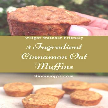 Dark Chocolate Kodiak Muffins Only one point on Weight Watchers, the perfect Low Cal Treat..check o